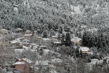Στις 4 Ιανουαρίου η κοπή  πίτας των Κρυονεριτών Ορεινής Ναυπακτίας