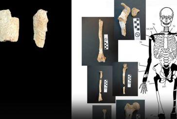 Αμφίπολη: 5 οι σκελετοί που βρέθηκαν!