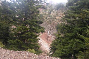 Εικόνα καταστροφής στο ορεινό Θέρμο