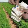 Ο Αγροτικός Συνεταιρισμός Μεσολογγίου-Ναυπακτίας «Η Ένωση» ανακοινώνει ότι αύριο 3/07/2015...