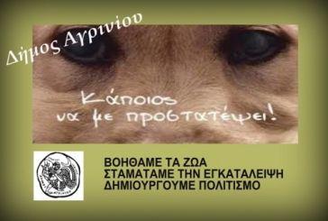 Εκδήλωση για τα αδέσποτα την Πέμπτη από το δήμο Αγρινίου
