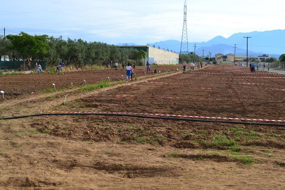 Ξεκίνησε σήμερα η λειτουργία του δημοτικού λαχανόκηπου Αγρινίου (φωτό)