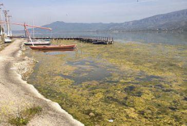 Αποπνικτική κατάσταση στην παραλιακή ζώνη του Αιτωλικού