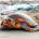 Νεκρές ή τραυματισμένες χελώνες caretta caretta ξεβράζονται το τελευταίο διάστημα...