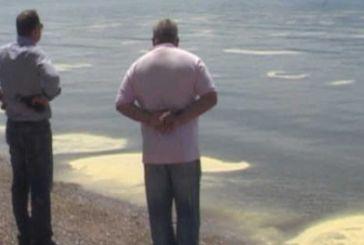 Με κίτρινη ουσία γέμισε η θάλασσα στο Γρίμποβο της Ναυπάκτου