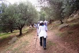 Δήμος Ναυπακτίας και ΕΟΣ Ναυπάκτου τίμησαν την Παγκόσμια Ημέρα Περιβάλλοντος
