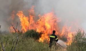 Κατασβέστηκε η φωτιά στην Μαλεσιάδα