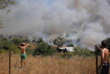 Φωτιά στην Πάλαιρο, κινδυνεύουν σπίτια