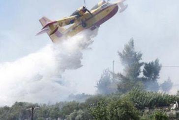 Σακαράκες τα Καναντέρ – Πυροσβέστες: Δεν έχουμε μέσα