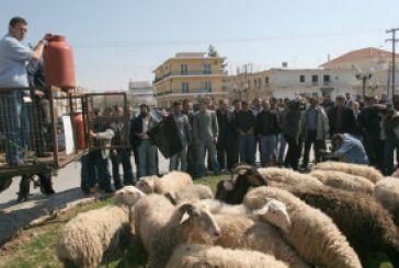 Συγκέντρωση αγροτών- κτηνοτρόφων στην Αμφιλοχία