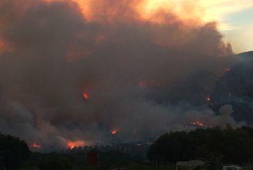 Νέα μεγάλη φωτιά στην Πάλαιρο – ισχυρές δυνάμεις στη μάχη με τις φλόγες