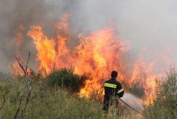 Φωτιά στη Γραμμένη Οξυά