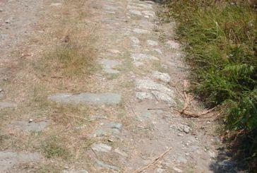 Καθαρισμός αγροτικών δρόμων στο Δήμο Μεσολογγίου