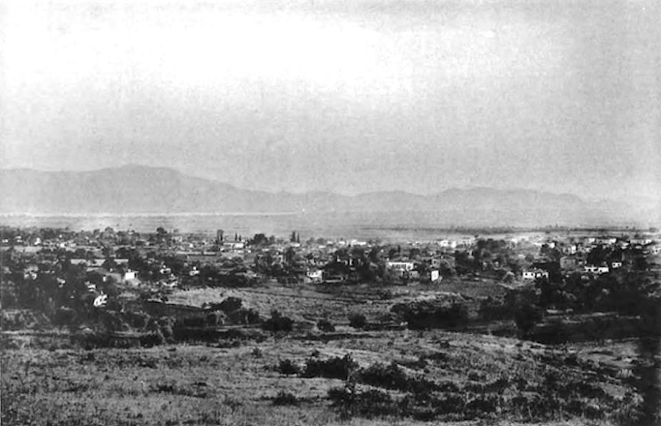 agriniopalio1893
