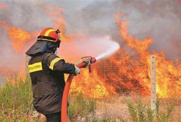 Κατάσβεση φωτιάς κοντά στο Λεσίνι