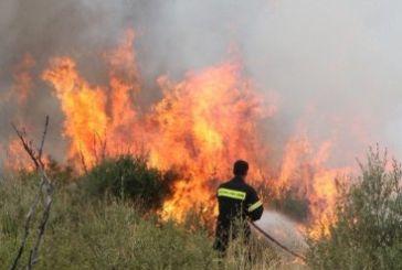 Μεγάλη πυρκαγιά στη Χούνη -φωτιές και σε άλλες περιοχές