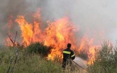 Κάηκε δασική έκταση στη Μαγούλα Αιτωλικού