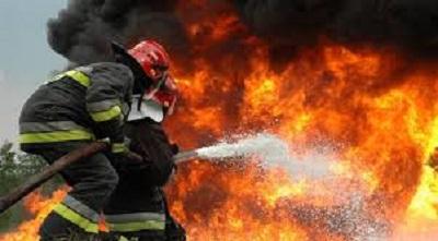 Άμεσα υπό έλεγχο  η φωτιά στη Γαβρολίμνη (βίντεο)