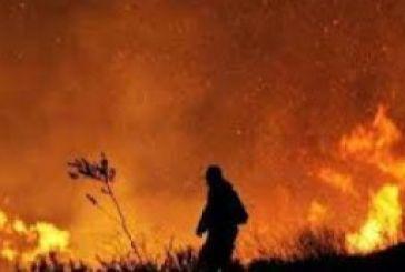 37χρονος ομολόγησε για τις δύο φωτιές στην Τρύφο Ξηρομέρου