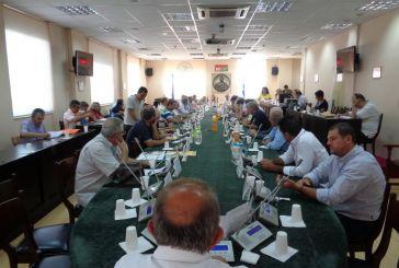 Περιφερειακό Συμβούλιο: Πρωτόκολλο συνεργασίας για τα ΑμεΑ