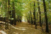 Απαγόρευση κυκλοφορίας – παραμονής σε δασικές περιοχές της Αιτωλοακαρνανίας την Παρασκευή