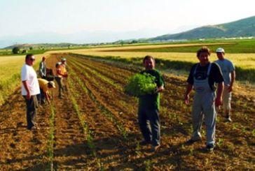 Διαμαρτυρία αγροτών της Αιτωλοακαρνανίας στο Yπουργείο Αγροτικής Ανάπτυξης