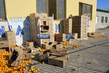 Μεσολόγγι: αντιδράσεις και ερωτηματικά για τα πεταμένα πορτοκάλια…