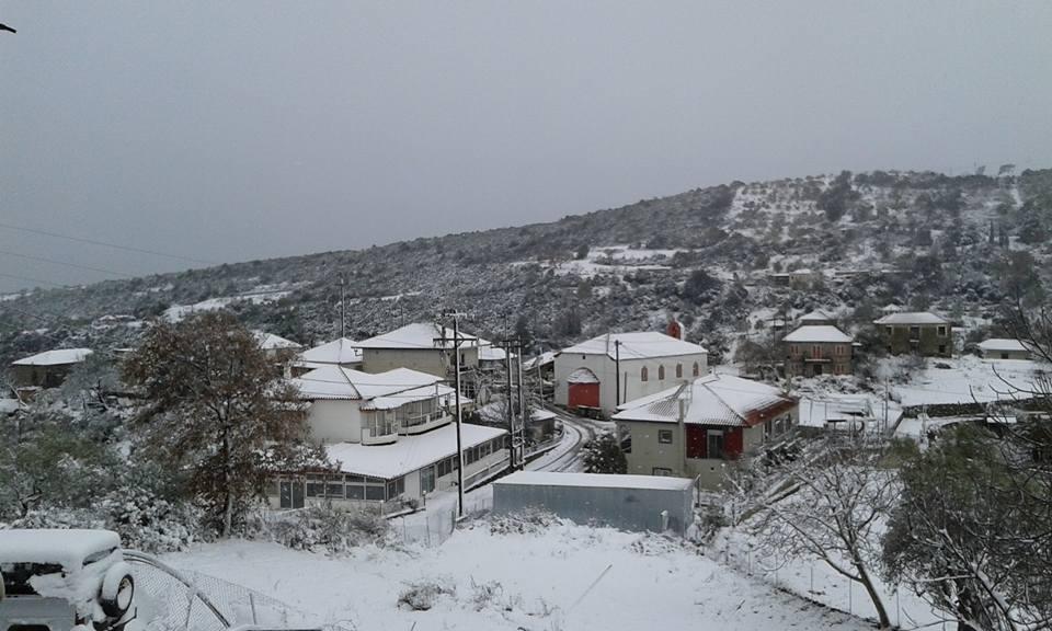 ΣΑΡΓΙΑΔΑ-  parakampylianews.blogspot.gr