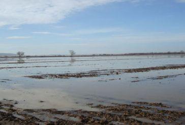 Απάντηση Μπόλαρη για τις αποζημιώσεις από τις βροχοπτώσεις του Αυγούστου