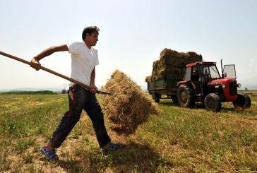 Από 22 Μαρτίου οι αιτήσεις για την «ανάπτυξη μικρών γεωργικών εκμεταλλεύσεων»