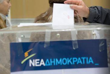 Στην τελική ευθεία για την εκλογή προέδρου ΝΟΔΕ