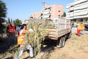 Προσλήψεις 20 ατόμων στο Δήμο Μεσολογγίου για πέντε ημερομίσθια τον Δεκέμβριο
