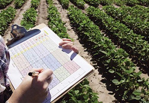 ΣΥΡΙΖΑ: καταγγελίες αγροτών για υπερβολικές τιμές στις δηλώσεις ΟΣΔΕ