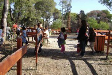 ΟΑΕΔ: Αναρτηθήκαν τα προσωρινά αποτελέσματα για τις παιδικές κατασκηνώσεις