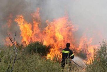 Υπό έλεγχο η πυρκαγιά στα Παρακαμπύλια