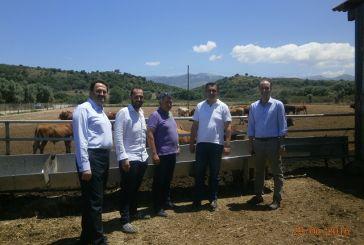 Aνακοίνωση της ΝΟΔΕ για την επίσκεψη Κασαπίδη