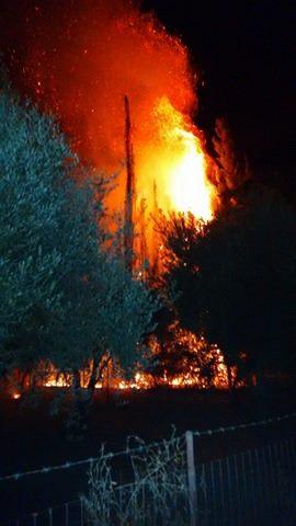 Φωτιά ξέσπασε τα μεσάνυχτα στο Τριχώνιο Μακρυνείας (φωτο)