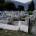 Φωτογραφία και βίντεο με πρόβατα να βόσκουν… ανενόχλητα χθεςστο Νεκροταφείο […]