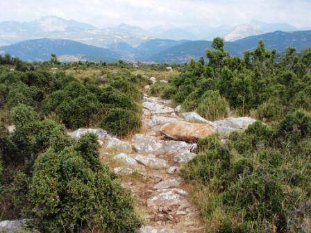 """ΜΟΝΟΠΑΤΙΑ - """"ΟΙ ΛΕΩΦΟΡΟΙ"""" ΤΟΥ ΑΥΡΙΟ Μονοπάτι στην κορυφή του λόφου Μέγας Λάκκος (618 μ. υψόμετρο), ο οποίος δεσπόζει στο οροπέδιο του Θέρμου, στο μικρό """"των Θερμίων πεδίον"""" κατά τον ιστορικό Πολύβιο. Ένας λόφος με ιδιαίτερη σημασιολογία για την περιοχή, όχι μόνο γιατί δεσπόζει στο οροπέδιο του Θέρμου και προσφέρει πανοραμική θέα, αλλά, κυρίως, γιατί η περιοχή στους δυτικούς πρόποδές του είναι αυτή που αποτέλεσε το σημείο αναφοράς των Αιτωλών, το σημείο στο οποίο γεννήθηκε και εξελίχθηκε το τελειότερο πολιτειακό μόρφωμα κατά την αρχαιότητα, το """"Κοινό των Αιτωλών"""", η Αιτωλική Συμπολιτεία. Η συντήρηση και σήμανση μονοπατιών, αλλά και δημιουργία νέων όπου αυτό απαιτείται, αποτελεί βασική υποδομή που πρέπει να εξασφαλισθεί για την περιοχή του Δήμου Θέρμου, προκειμένου να διασφαλισθεί η δυνατότητα επισκεψιμότητας στο σύνολο των αξιοθέατων της περιοχής, πολλά από τα οποία είναι σήμερα πολύ δύσκολο να προσεγγιστούν από τον πολύ κόσμο. Τα μονοπάτια μπορούν να αποτελέσουν τις """"λεωφόρους"""" της ανάπτυξης του οικοτουρισμού γι' αυτήν την περιοχή. (Φωτογραφία: Φαλλιέρος Χρήστος - Περιγραφή: Κωστακόπουλος Νίκος)"""