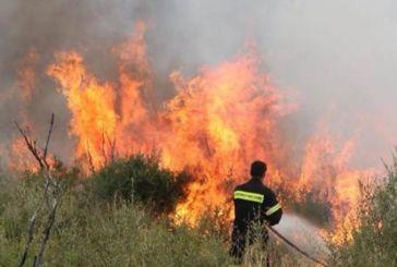 Μαίνεται η φωτιά στον Ταξιάρχη Θέρμου