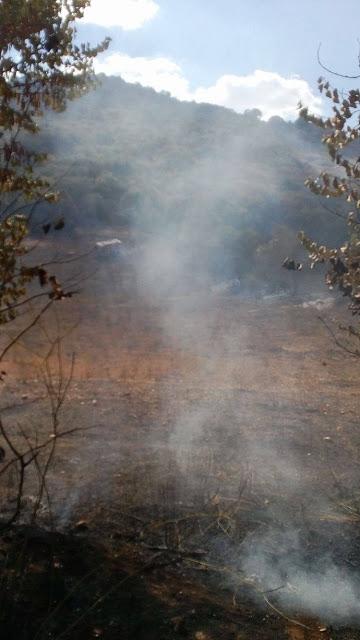Άμεση κινητοποίηση για φωτιά στο Λουτράκι, κοντά στην Κατούνα