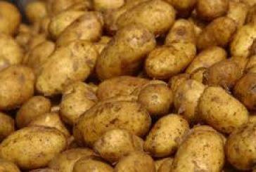Τσουχτερό πρόστιμο για ελλιπείς ενδείξεις σε πατάτες