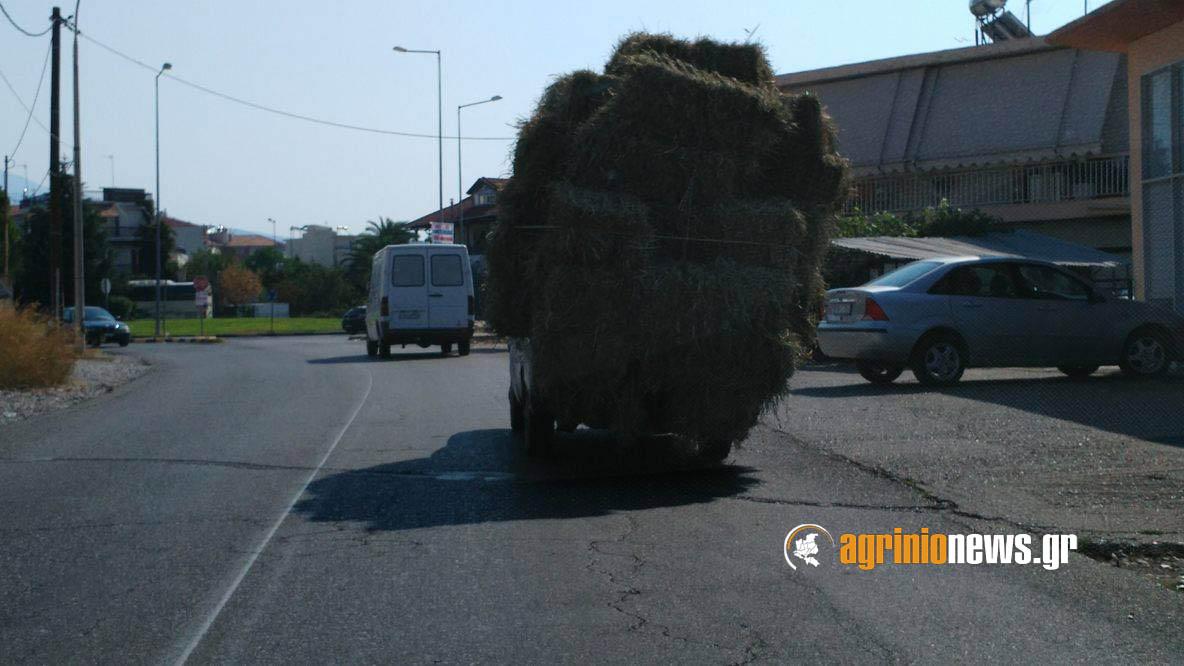 Αγρίνιο: Λύγισαν και οι καρότσες από τον πολύ σανό!