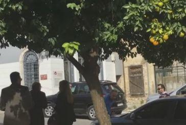 Nαύπακτος: ενόχληση του υπουργού για το καπό που βούλιαξε ο αντιδήμαρχος