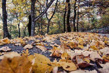 Video: Φθινόπωρο στην Αιτωλοακαρνανία