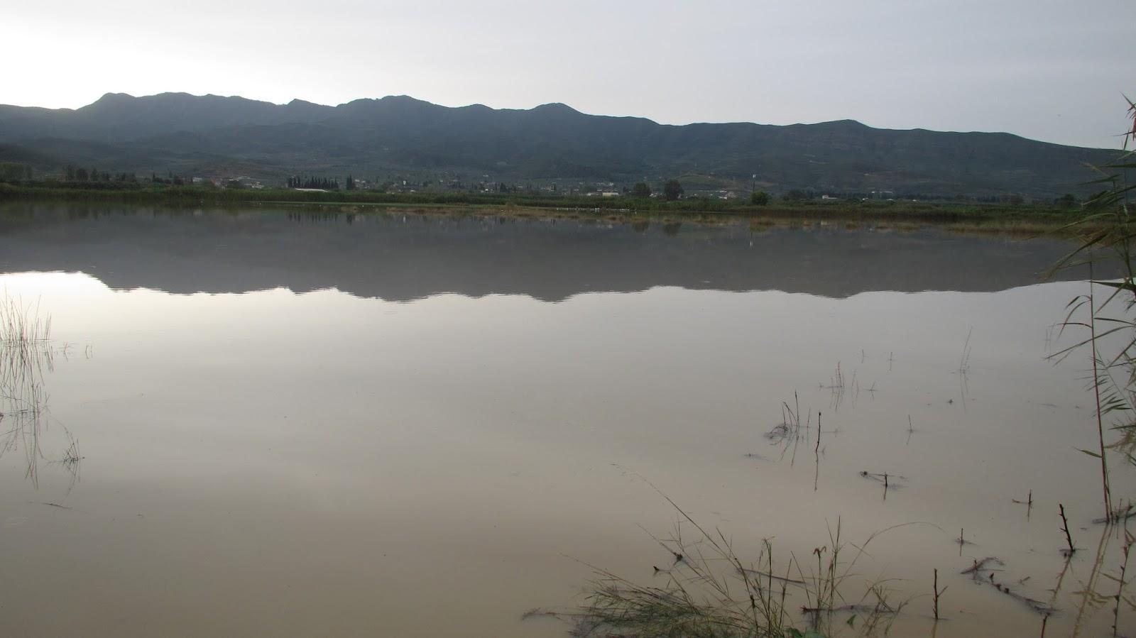 """Αγρός που κυριολεκτικά έχει μετατραπεί σε λίμνη. Βρίσκεται μερικά μέτρα μετά τον """"Βιολογικό"""" στο δρόμο προς το ΤΕΙ"""