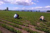 Βιολογική γεωργία: Επιπλέον χρηματοδότηση 80 εκατομμυρίων ευρώ