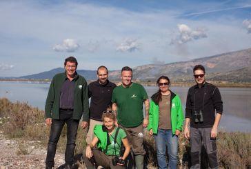 Απελευθέρωση παρυδάτιων πουλιών στο εθνικό πάρκο λιμνοθαλασσών Μεσολογγίου – Aιτωλικού