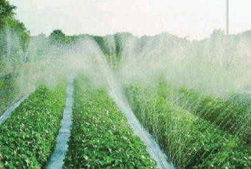 Ι. Φωτήλας: υπάρχει σχεδιασμός για μείωση της νιτρορύπανσης στην Αιτωλοακαρνανία;