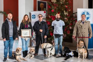 Γιόρτασε τα 45 χρόνια από την ίδρυση του ο Πανελλήνιος Κτηνιατρικός Σύλλογος